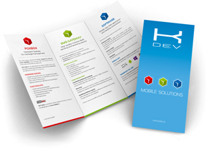 KDEV Mobile Solutions - Flyer